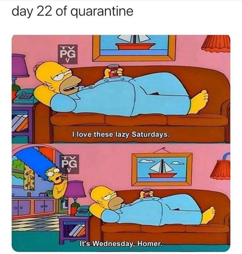 day 22 of quarantine
