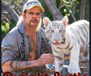 Dwight Exotic – Dwight Schrute Joe Exotic Meme