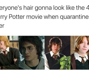 Everyone's Hair Gonna Look Like The 4th Harry Potter Movie When Quarantine Is Over – Meme