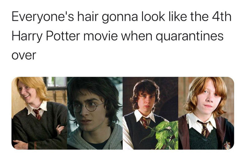 everyones hair gonna look like harry potter