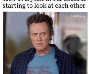 How Everyone In Our Home Is Starting To Look At Each Other – Meme