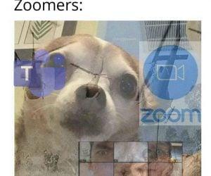 Kids In 2069 Ok Zoomer – Meme
