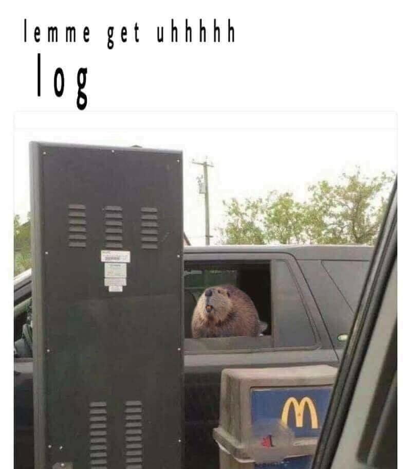 lemme get uhhh log meme