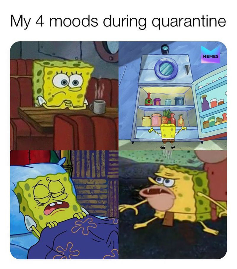 my 4 moods during quarantine