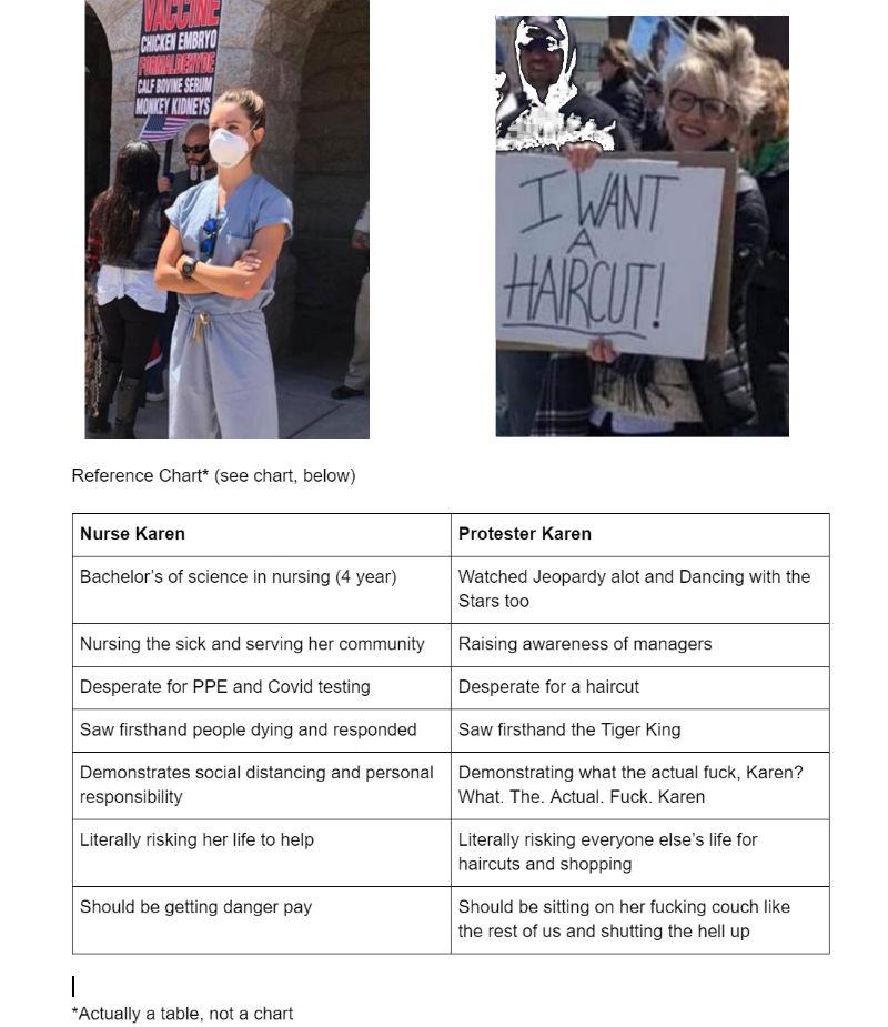 nurse vs karen protester