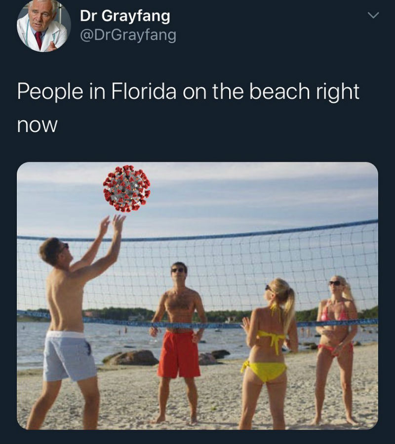 people in florida at the beach