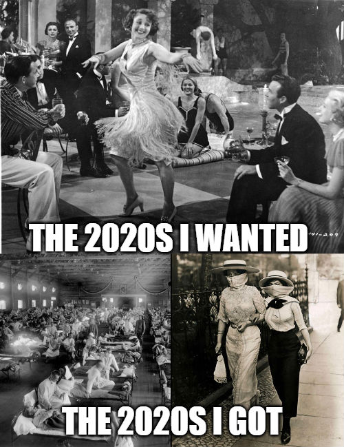 the 2020s i wanted the 2020s i got meme
