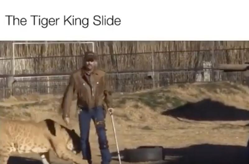 the tiger king slide meme