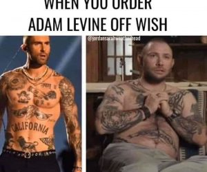 When You Order Adam Levine Off Wish – Tiger King Meme