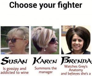 Choose your fighter Susan Karen Brenda – meme