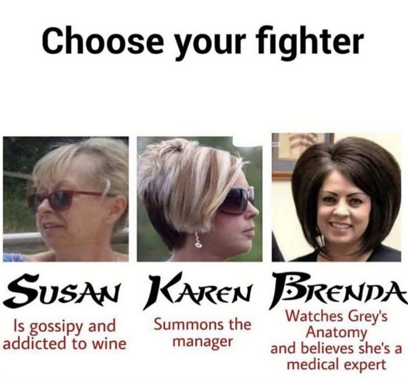 choose your fighter karen meme