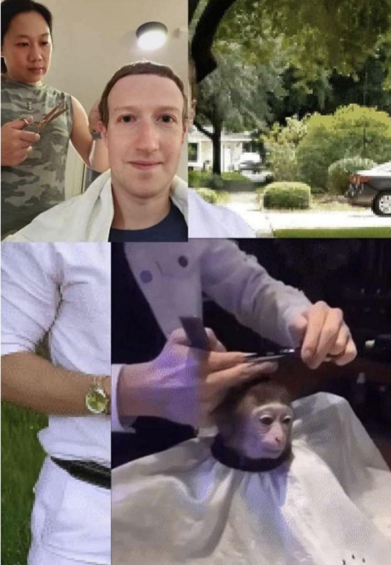 cutting mark zuckerberg hair meme