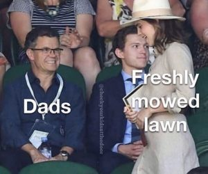 Dads Freshly Mowed Lawn – Meme