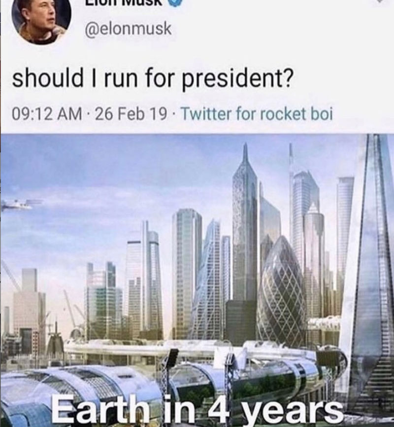 elon musk should i run for president