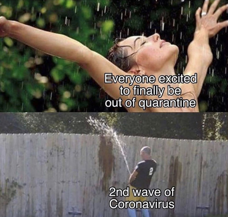Everyone Excited To Finally Be Out Of Quarantine 2nd Wave Of Coronavirus Meme Shut Up And Take My Money