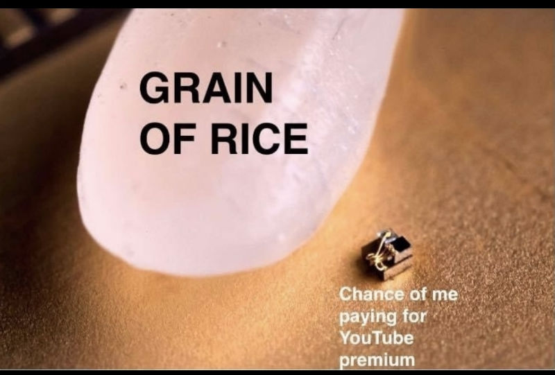 grain of rice chances of me buying youtube premium meme