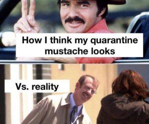 How I Think My Quarantine Mustache Looks Vs Reality – Meme