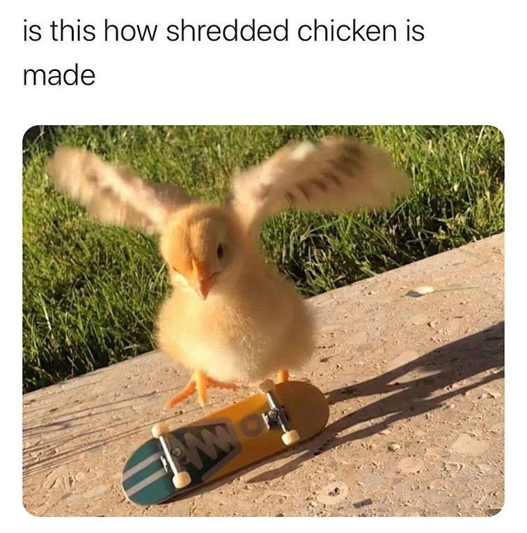 is this how shredded chicken is made meme