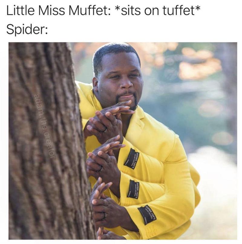 little miss muffet sits on a tuffet spider meme