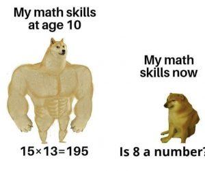 My Math Skills At Age 10 Vs My Math Skills Now Doge Meme