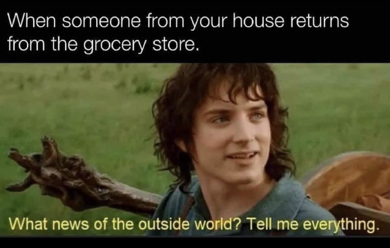 when someone from your house returns from the grocery store