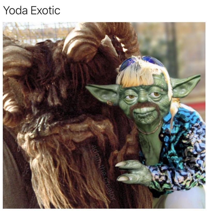 yoda exotic meme