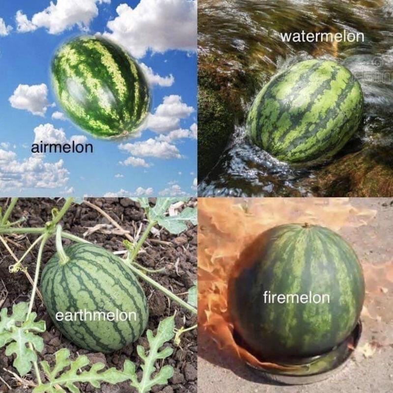airmelon watermelon