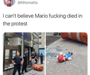 I Can't Believe Mario Died In The Protest – Meme