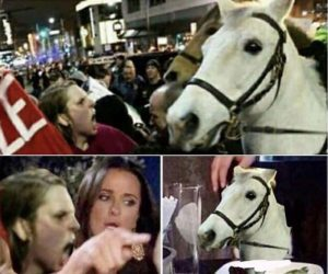 Lady I'm Just A Horse Why Are You Yelling At Me – Protest Meme