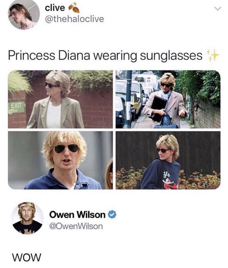 owen wilson looks like princess diana meme