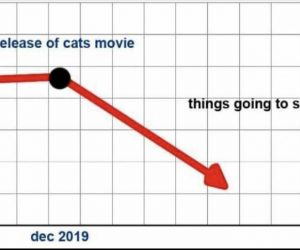 Release Of Cats Movie Things Going To Shit Graph – Meme