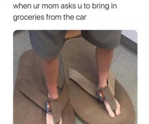 When Ur Mom Asks U To Bring In Groceries From The Car – Meme