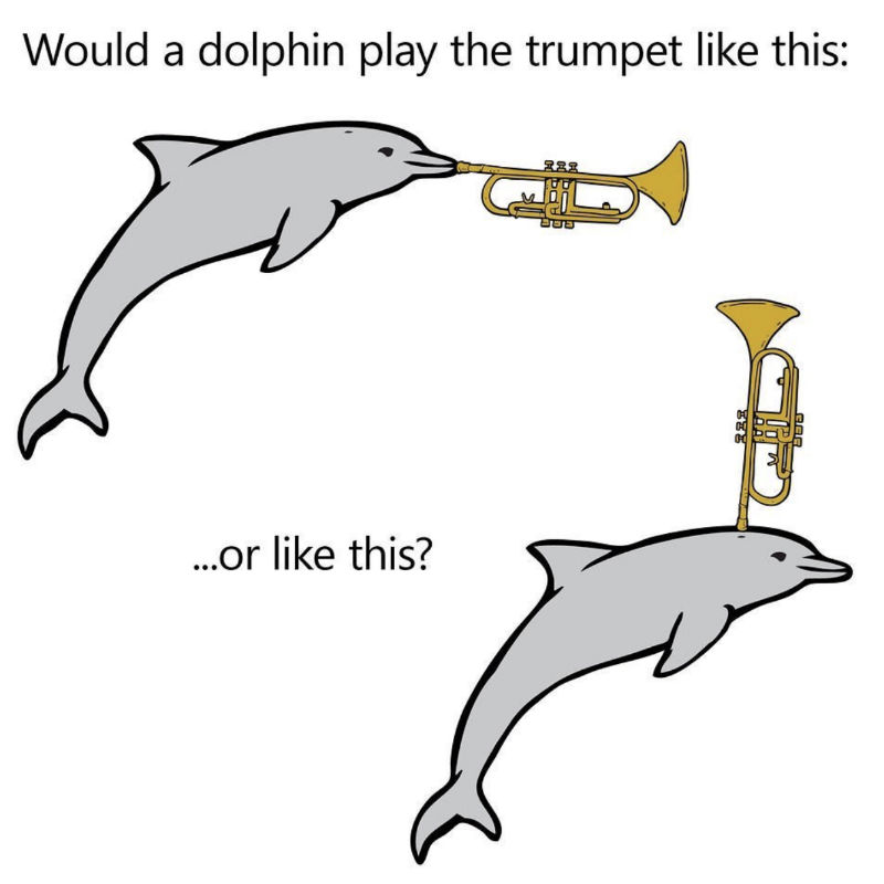 would a dolphin play the trumpet like this or this