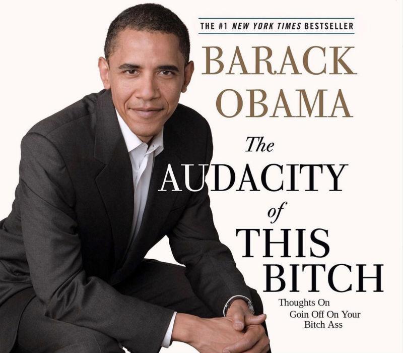 barack obama the audacity of this bitch