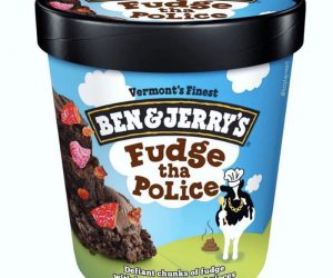 Ben And Jerrys Fudge The Police – Meme