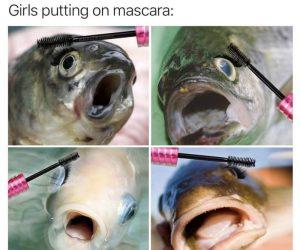 Girls Putting On Mascara – Meme
