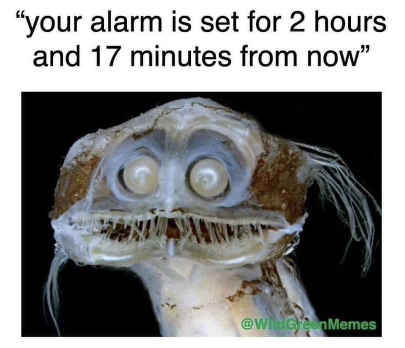 your alarm is set for 2 hours