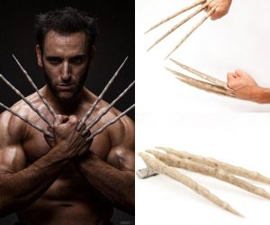 Wolverine Bone Claws – It all started here before the Adamantium claws!