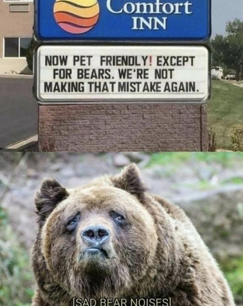 now pet friendly except for bears meme