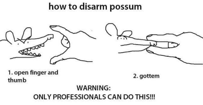 how to disarm possum