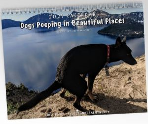 Dogs Pooping in Beautiful Places 2021 Calendar – The best gift a pet lover can get!