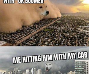 Kid Hitting Me With OK Boomer – Meme