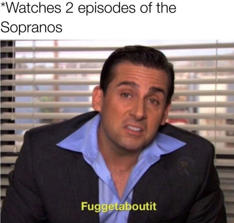 watches 2 episodes of the sopranos