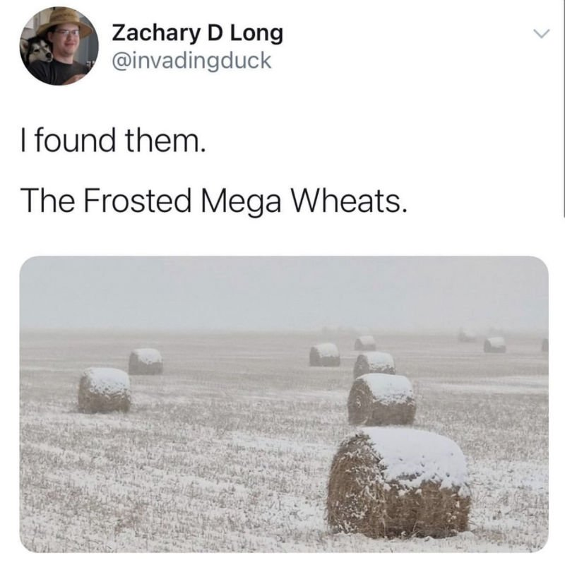 i found them frosted mega wheats