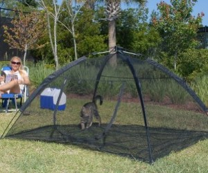 Outdoor Cat Tent: Let you kitty explore the outdoors (well sorta) with the Happy Habitat for Indoor Cats. This habitat provides more than 30 square feet of outdoor fun!