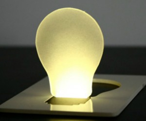 Credit Card Light Bulb – With the stormy season quickly approaching, you never know when you will be in need of an emergency light. Good thing you will have one