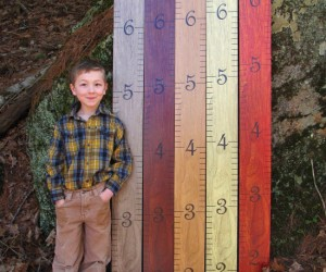You're taught from a young age to use a ruler to measure things, so it only makes sense to use one to measure your kids.