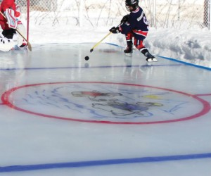 Now you can practice that triple axle or hitting the puck in the privacy of your own backyard!