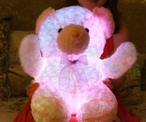 Light Up Teddy Bear – This gift will make the receiver's heart glow!