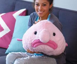 Blobfish Plush – Now the world's ugliest fish, is the world's cuddliest plush!